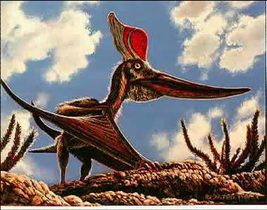 รูปที่ 2.1 เทอราโนดอน( pteranodon )